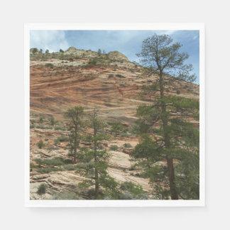 Serviettes Jetables Murs usés de roche en parc national de Zion