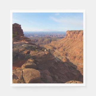 Serviettes Jetables Point de vue grand au parc national de Canyonlands