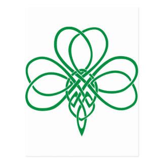 Shamrock celtique carte postale