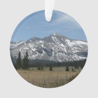 Sierra montagnes de Nevada I de Yosemite