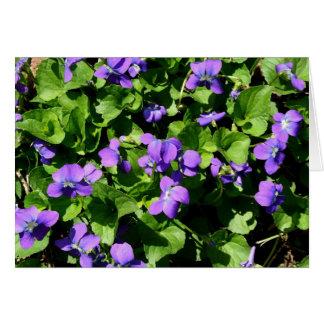 Signification des cartes de note de violettes