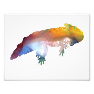 Silhouette abstraite colorée d'axolotl photo