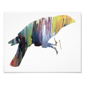 Silhouette abstraite colorée de Grossbeak Photos