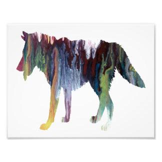 Silhouette abstraite colorée de loup  tirage photo