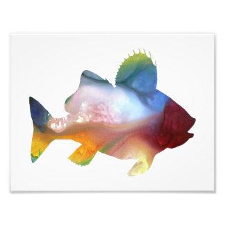 Silhouette abstraite colorée de perche impressions photo