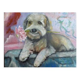 simpatia di un cane.jpg cartes postales
