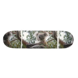 Skateboard 20,6 Cm Planche à roulettes de koala