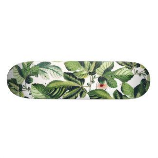 Skateboard Jardin de figue