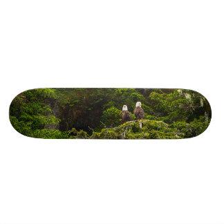 Skateboard Old School 18,1 Cm Deux Eagles étaient perché Painterly