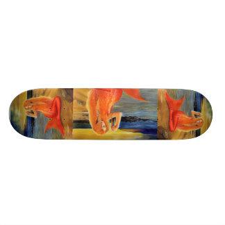 Skateboard Old School 21,6 Cm Planche à roulettes principale de crâne de coucher
