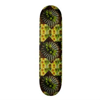 Skateboard Old School 21,6 Cm Type de plate-forme de Borarding de patin :