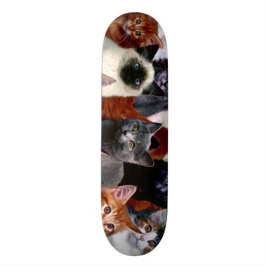Skateboards Panneau fait sur commande urbain de parc de chats