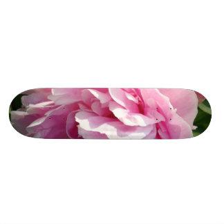 Skateboards Pivoine rose