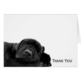 Slaap Zwart Puppy Briefkaarten 0