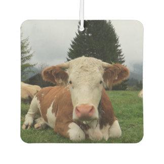 Sluit omhoog van het bruine en witte koe bepalen luchtverfrisser