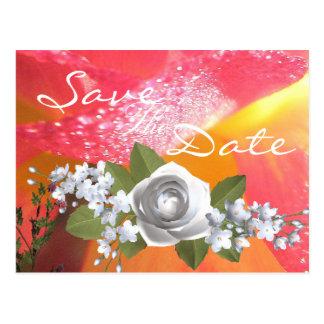 Sombre Carte Postale