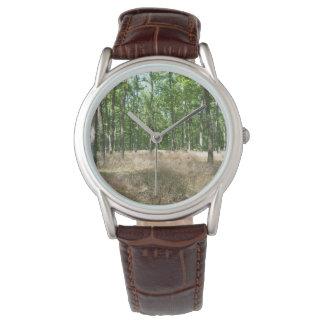 sous-bois et graminées à l'automne montres bracelet