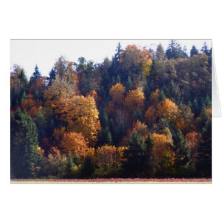 Splendeur d'automne carte