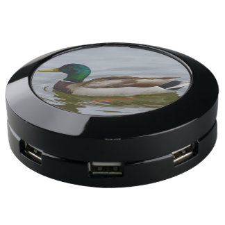 Station De Chargement USB Bain de Mallard de bain