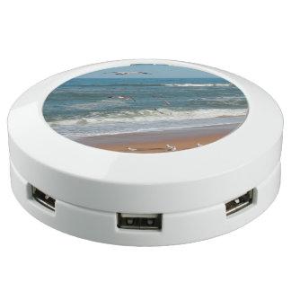 Station De Chargement USB Mouettes volant au-dessus de la plage