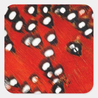 Sticker Carré Abrégé sur rouge plume de Tragopan