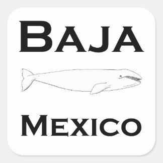Sticker Carré Baleine grise de Baja Mexique