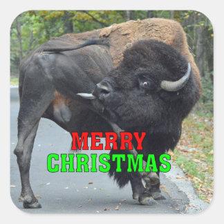 Sticker Carré Bison drôle de Taureau de Joyeux Noël léchant des