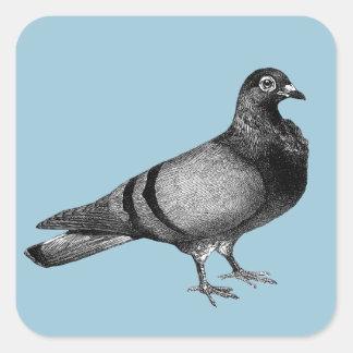 Sticker Carré Cadeaux vintages de pigeon
