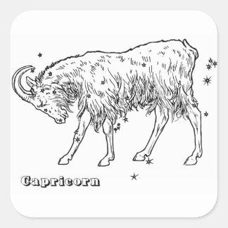 Sticker Carré Capricorne