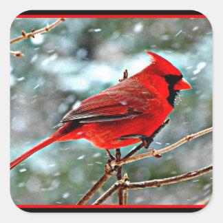 Sticker Carré Cardinal rouge dans la neige