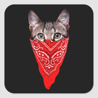 Sticker Carré chat de bandit - chat de bandana - bande de chat