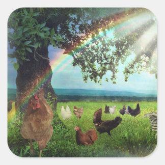 Sticker Carré Ciel de poulet
