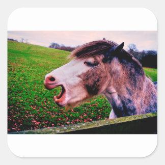 Sticker Carré Conception de cheval d'IMG_0897.JPG de Jane