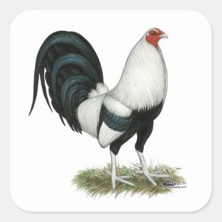Sticker Carré Coq de combat argenté de Duckwing