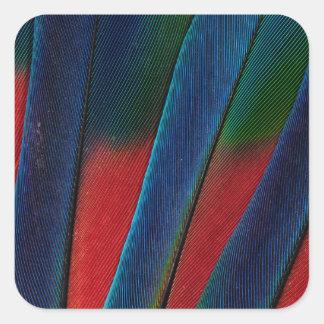 Sticker Carré Détail Bleu-Dirigé de plume de perroquet