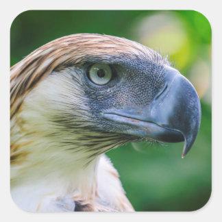 Sticker Carré Détail principal philippin d'Eagle
