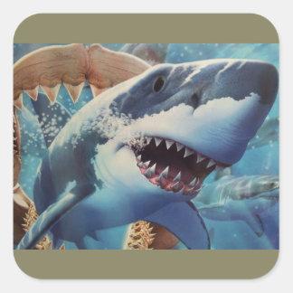 Sticker Carré emballage de requin