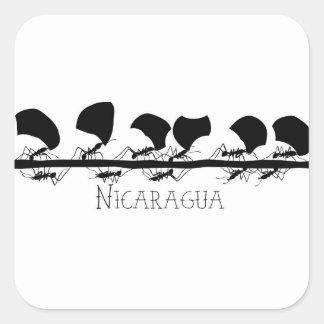 Sticker Carré Fourmis Nicaragua de Leafcutter