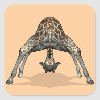 Sticker Carré Girafe flexible