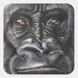 Sticker Carré Gorille