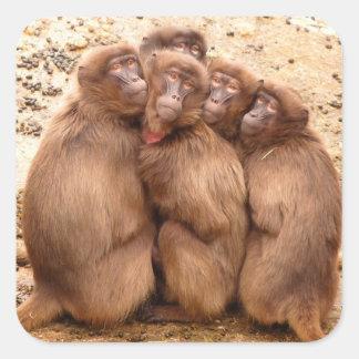 Sticker Carré Groupe d'autocollant de singes