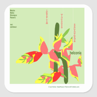 Sticker Carré Heliconia