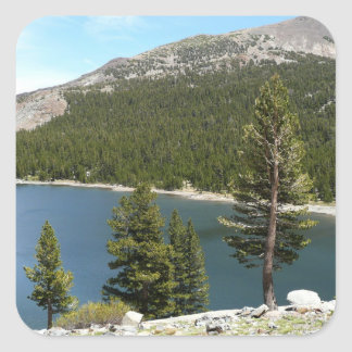 Sticker Carré Lac Tenaya en parc national de Yosemite