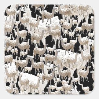 Sticker Carré Lama de lama et plus de lamas