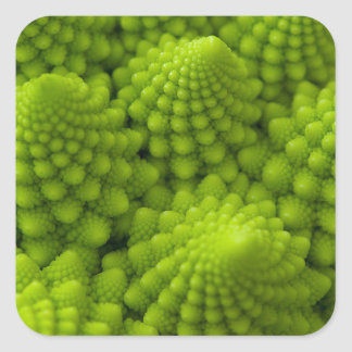 Sticker Carré Légume de fractale de brocoli de Romanesco