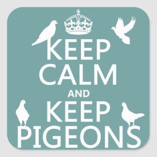 Sticker Carré Maintenez calme et gardez les pigeons - toutes les