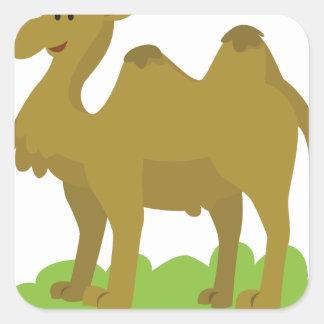 Sticker Carré marche de chameau grande