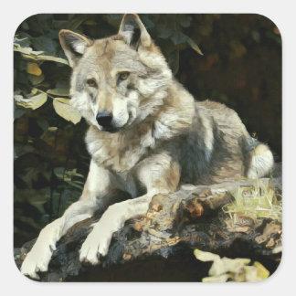 Sticker Carré Peinture de loup de bois de construction