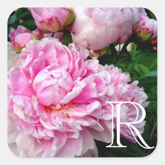 Sticker Carré Pivoine rose et blanche