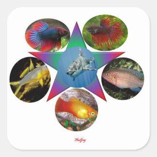 Sticker Carré poissons, poisson rouge, carpe, pêche, mer, océan,